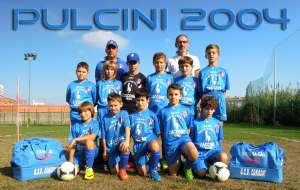 pulcini2004